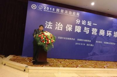 潘传平出席2018民盟法治论坛